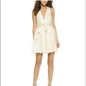 NWT, Rachel Zoe, Beck Tie Dress